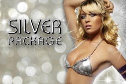 </p> <h3>SILVER PACKAGE - $169</h3> <p>